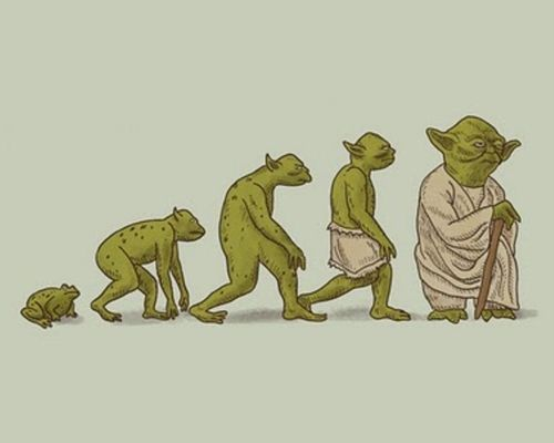 Эволюция адекватного человека