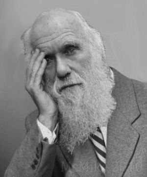 Последствия дарвиновской эволюции